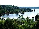 Il Bosco attorno al lago Baratz - AS 27 (3)