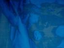 il_blu_33